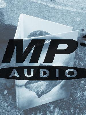 Bergteken MP3